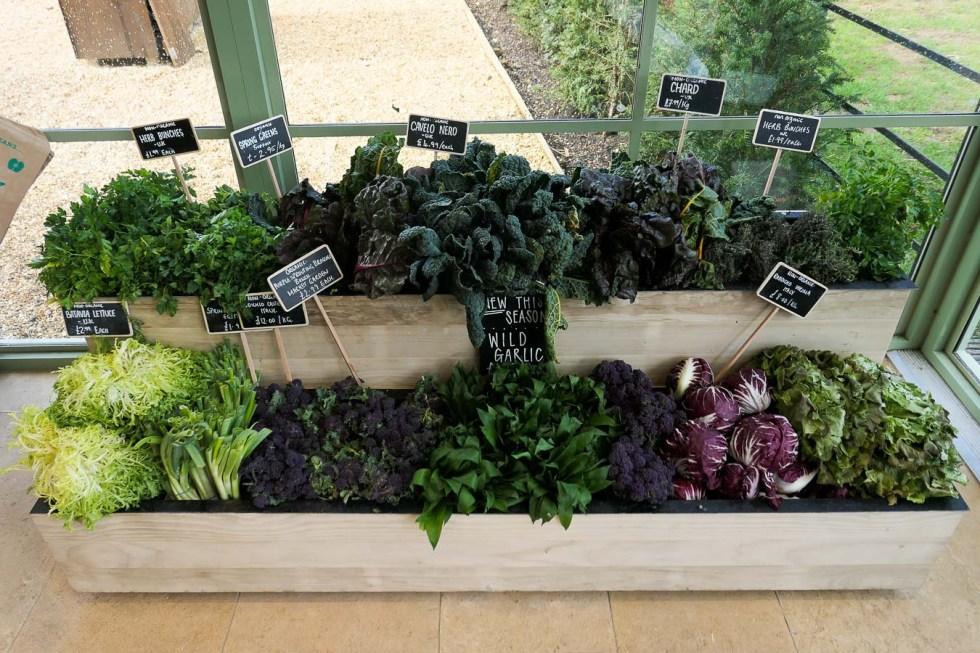 Daylesford Farm Shop + Restaurant - Gloucestershire - Fresh Lettuces