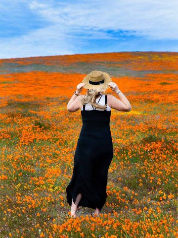 California Poppies Photoshoot - Maternity Shoot Ideas