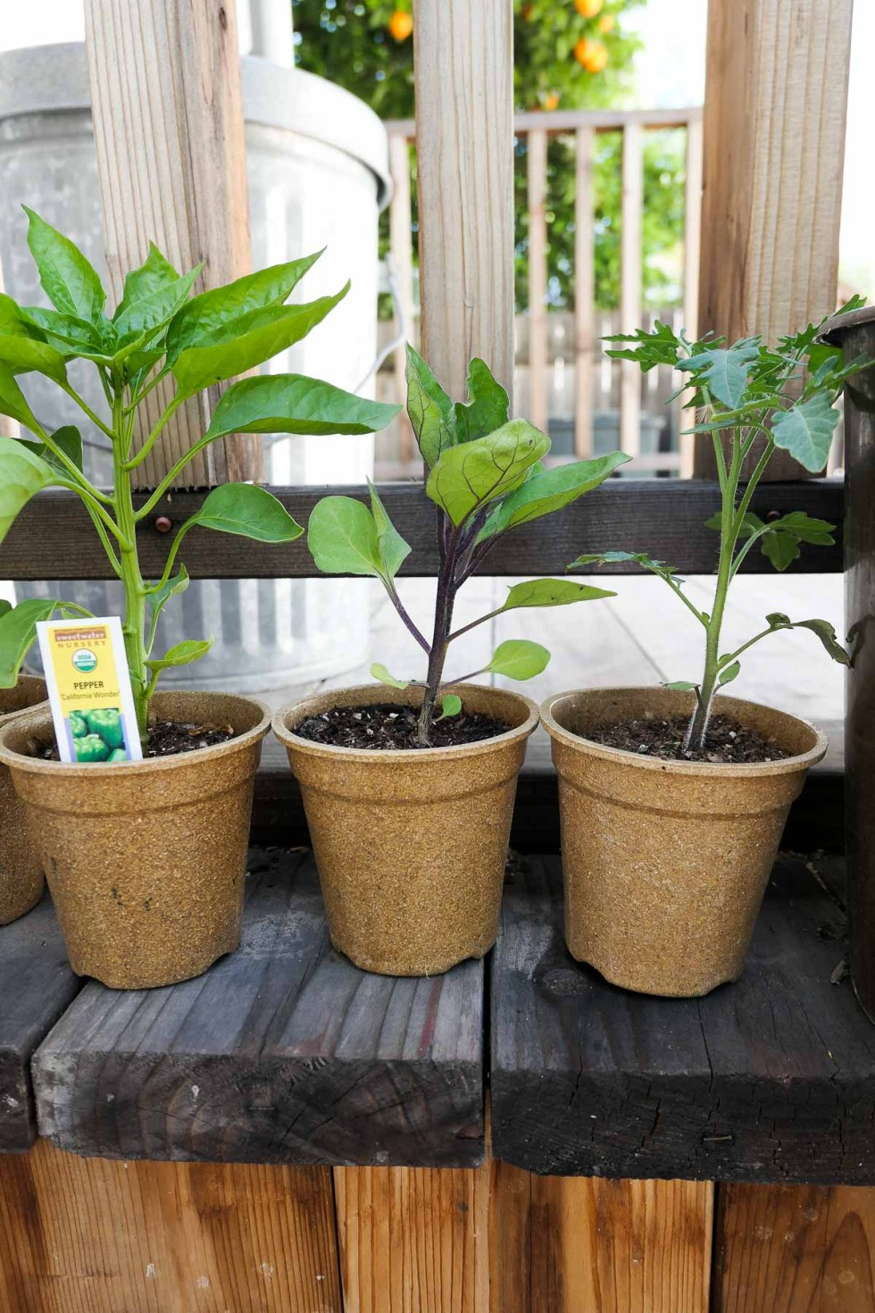 How to Recycle Household Goods -Plastic Garden Pots on Porch - Close Up