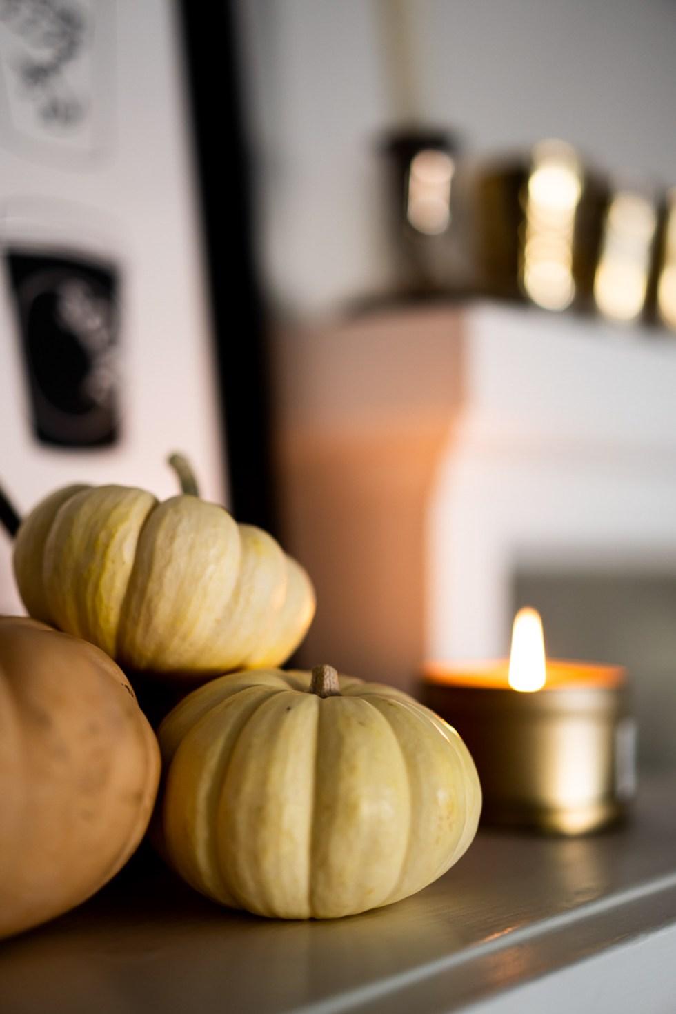 Small Pumpkins on Shelf - Natural Fall Decor