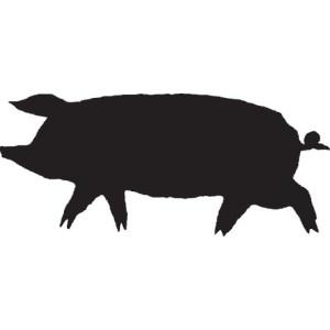Lucky 32 Pig