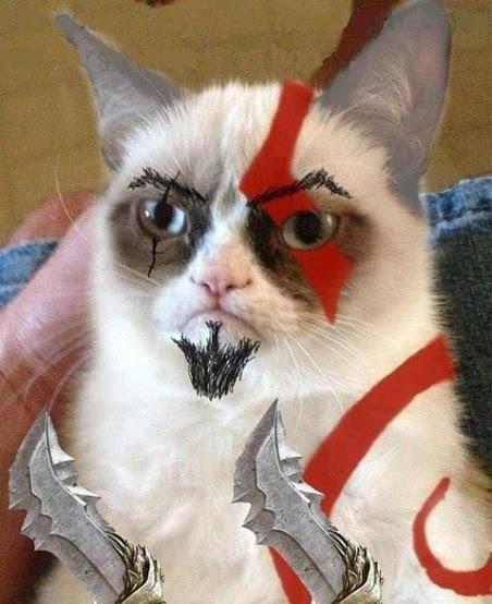Cat of War