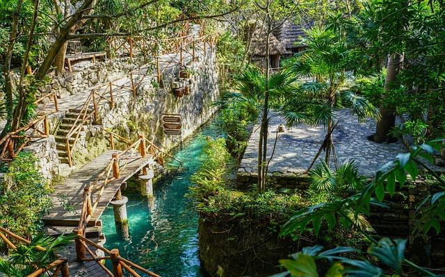 safari vacation, jungle of Mexico