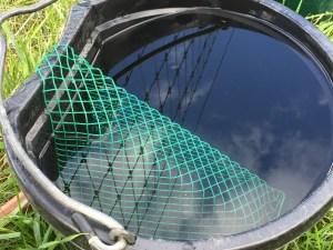 Wildlife Rescue Ramp in the bucket.