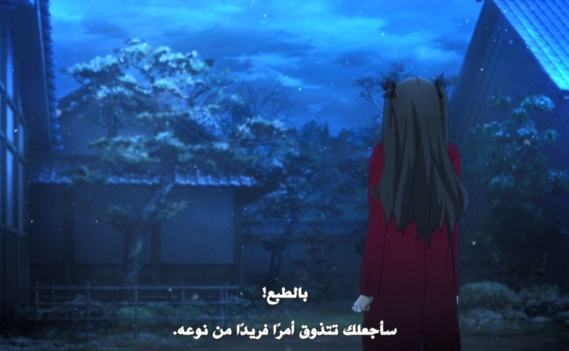 Fate/Stay Night 10-11