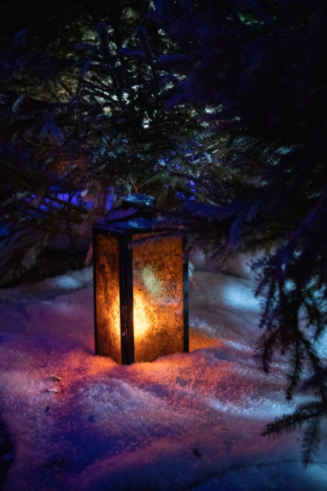 a lantern in the faux snow