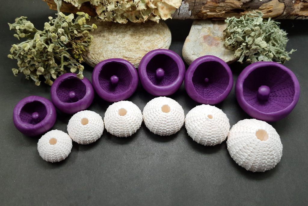 Sea Urchin's silicone molds for making good impressions 2