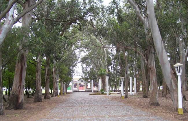 parque miguel lilo necochea 5 www.lugaresparavisitar.com.ar