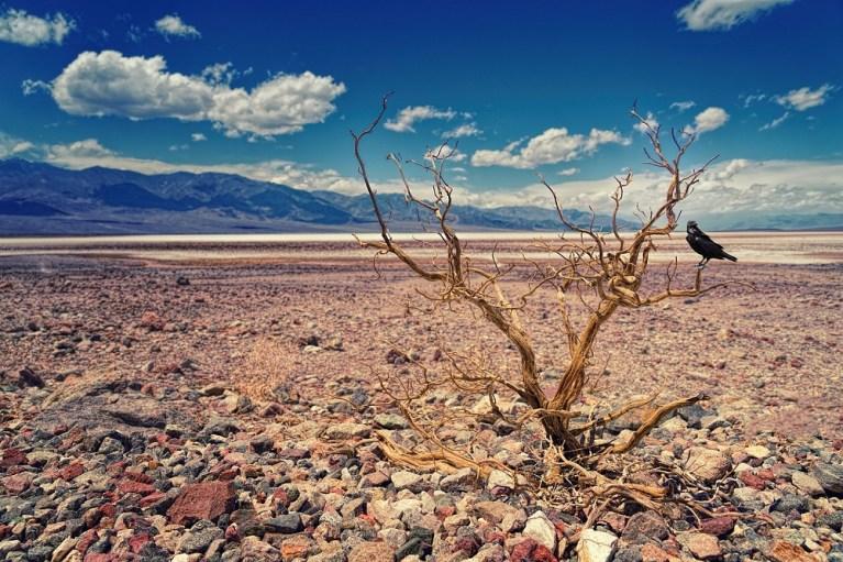 El valle de la muerte, el lugar más caluroso del mundo