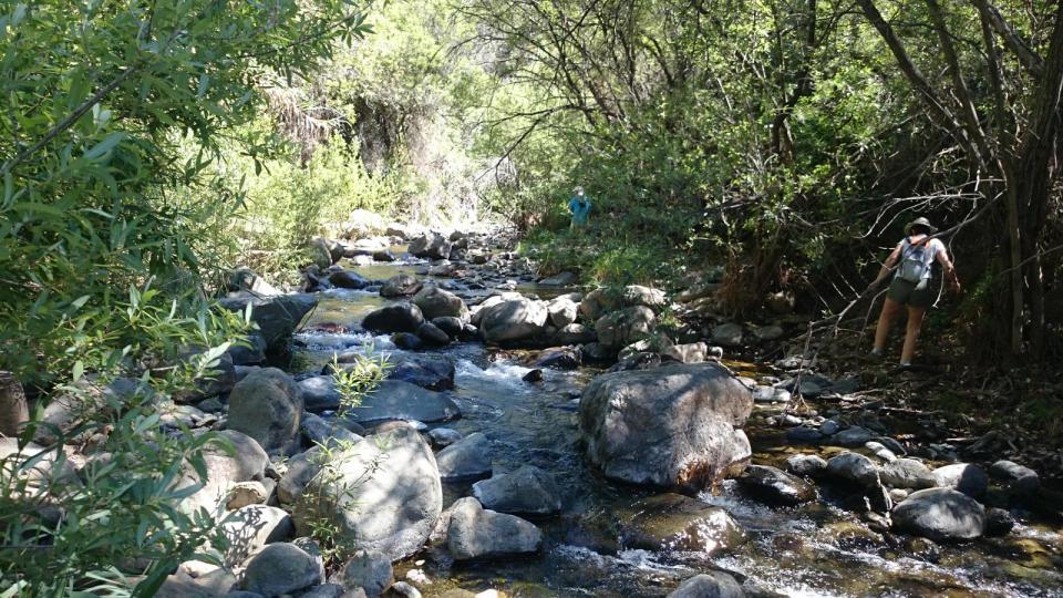 río Padrón