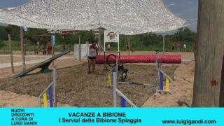Vacanze a Bibione 2019 – puntata 10 – La spiaggia dei cani più grande d Italia