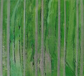 arch.n. 650 Contaminazione 139 Affresco su tavola + fili in cotone – cm 100x110, anno 2003
