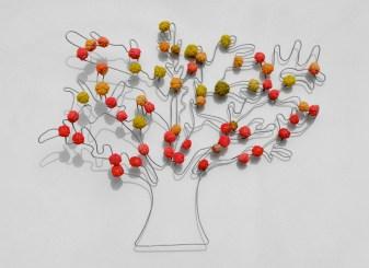albero30