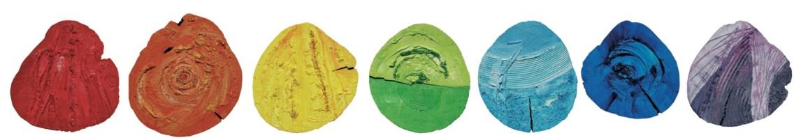 arch.n. 808 Colori allineati Affresco su 7 tagli di ciliegio diametro 35 ca - anno 2004