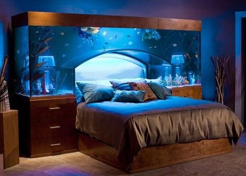 Aquarium Headboard, North Carolina