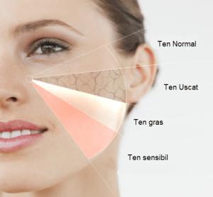 Ce tipuri de ten exista Determina ce tip de piele ai