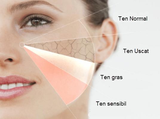 Ce tipuri de ten exista|Determina ce tip de piele ai
