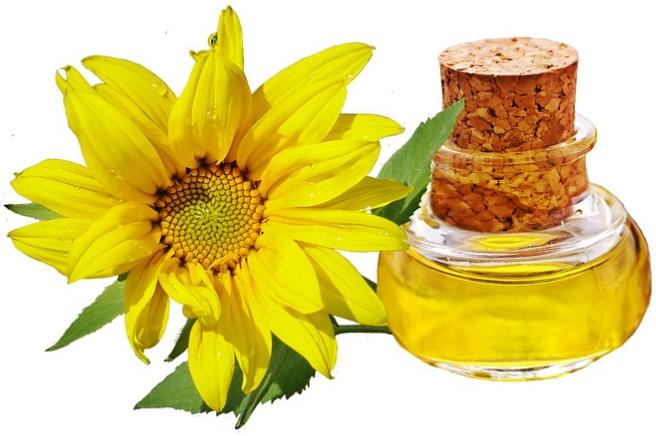 Tratamentul parului uscat cu ulei de floarea soarelui