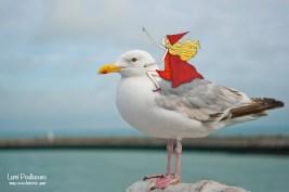 L'oiseau et la fille