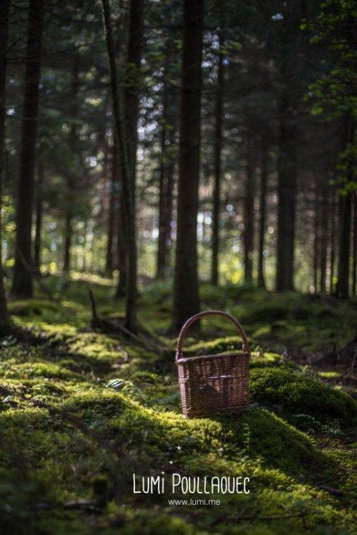finlande-lumi-poullaouec-photographies-29