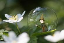 #02 - Seul dans sa bulle, son joli monde