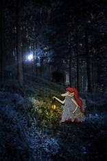 Le Gnome à Longue Barbe (Projet 52)