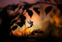Ombre de fée au petit matin -lumi Poullaouec Photographie et dessin