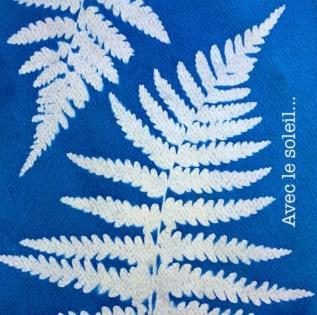 cyanotype une fois exposée au soleil puis rincé à l'eau. La partie exposée au soleil est devenue bleue foncé.