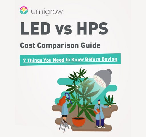 LED grow light versus HPS grow light graphic