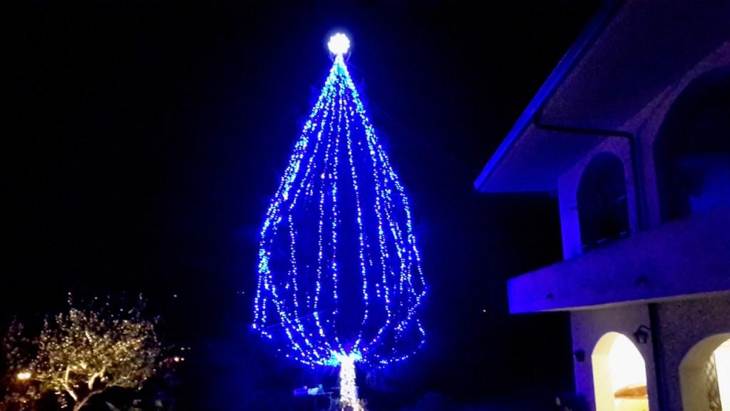 (Foto 15- 66) Albero blu 10m