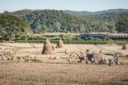 Myanmar-3609