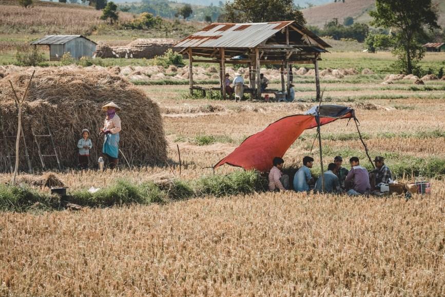 Myanmar-3832