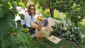 Visitare la Cantina Bersi Serlini e non solo