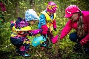 Neljän päiväkodin lapset istuttavat kuusentaimia ympäristöpääkaupunkivuoden kunniaksi
