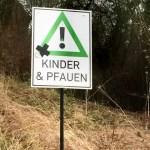 Kinder und Pfauen