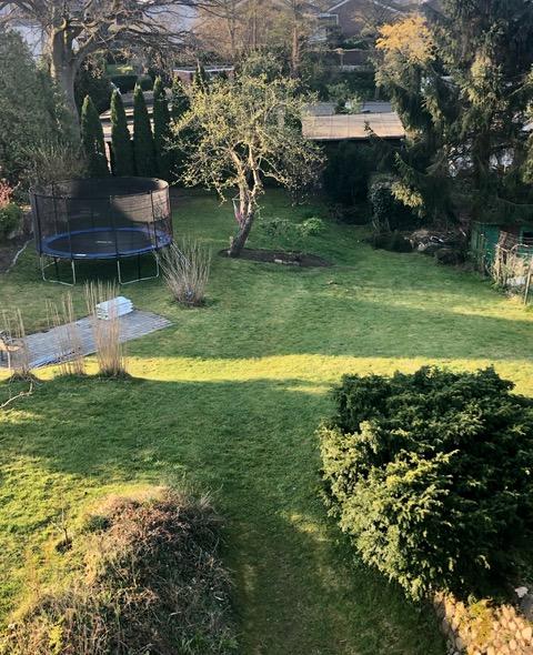 leerer Garten