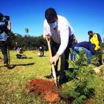 Plantaron 250 arbolitos en el predio de la Sede Social de la Cooperativa Luque