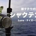 太刀魚狙いの新釣法「シャクテン釣法」っていったいどんな釣りなんだ!?