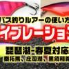 バス釣りルアーの使い方=バイブレーション編=琵琶湖-春夏対応=秦拓馬、庄司潤、黒須和義