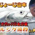 オカッパリ太刀魚-時合以外にも釣るための秘策は超重量級メタルジグなどの超遠投!【じょーじ山本が解説】