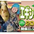 ヤマラッピ&タマちゃん&バンビー山中参加!サンラインエギングフェスティバル2017in周防大島、10月28日(土)に開催!