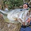 【最新冬メソッド】厳寒期に効く「フィネスリアクション」の実釣力を水野浩聡が大検証!