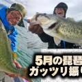 5月の琵琶湖をガッツリ振り返る!5月1日~5月20日の状況レポート【寄稿by奥山一平】
