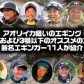 アオリイカ狙いのエギング-3号および3号以下のオススメのエギを著名エギンガー11人が紹介