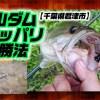 亀山(かめやま)ダム【千葉県君津市】のオカッパリバス釣り必勝法