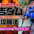 【実釣では何とロクマルも登場】京都のメジャーリザーバー日吉ダム!梅雨絡みの時期の攻略法【特別寄稿・from一拓也】