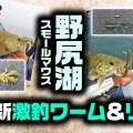 野尻湖スモールマウスバス最新激釣ワーム&リグはコレ【寄稿by奥泉悠介】