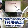 九州・大分県の人気バス釣りリザーバー「芹川ダム」での激釣必殺リグを紹介【スピニング使用!レッグワームのヘビーダウンショット】