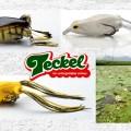 テッケルの人気フロッグ3種を紹介!日米のトーナメンターやプロガイドたちからも人気のバス釣り用フロッグはコレ
