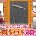 【デカバス2ケタ】三宅貴浩のハイプレ時の切り札!HPシャッドテールのショートDS